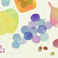梨 ブドウ イチジク ドングリ 柿 木の実