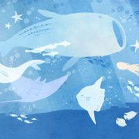 水族館 アクアリウム 海中 ジンベイザメ スナメリ マンタ マンボウ タコ 魚 海