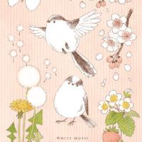 エナガ 桜 モンシロチョウ タンポポ 綿毛 イチゴ