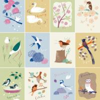 エナガ 白鳥 メジロ スズメ セイタカシギ ツバメ コマドリ サンコウチョウ シジュウカラ ジョウビタキ ハクセキレイ コミミズク 3色刷り